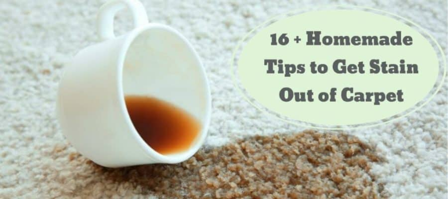 Stains Out of the Carpet (Homemade Tips